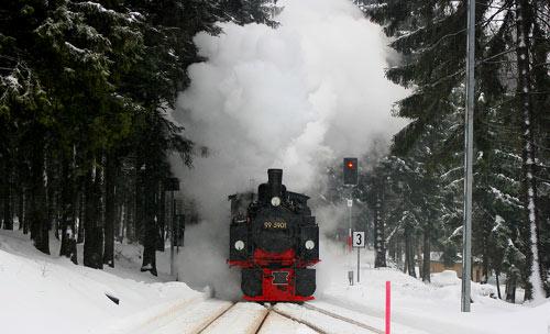 Harzdampf
