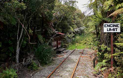 Im kalten Regenwald der Westküste endet derr Schienenstrang.